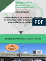 Slide (TCC Humanização SIB)