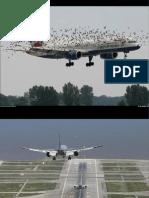 Aviatie-Best Aviation Photography(DG)