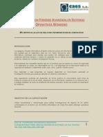 Investigacion Forense Avanzada Sistemas Operativos Elffil20121126 0002