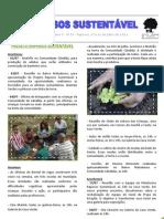 Informativo Raposos Sustentável - Ano 5 - nº 55