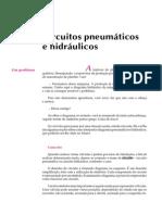 Circuitos Hidráulicos e Pneumáticos