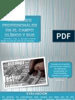 Funciones profesionales en el campo clínico y sus implicaciones (Psicología Clínica)-