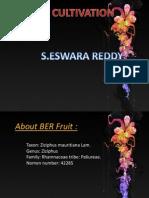 Ber Production Technology-ESWAR