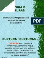 CULTURA E CULTURAS - Cultura das Organizações