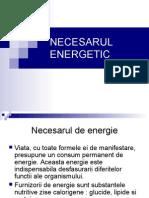 Curs Necesarul Energetic