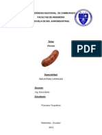 Informe de Chorizo Unach