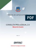 _manual_consulta_processual2.pdf