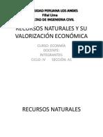 Recursos Naturales y Su Valorizacion Economica