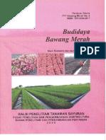 B1-BudidayaBawang