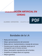 EXPO. INSEMINACIÓN ARTIFICIAL EN CERDAS