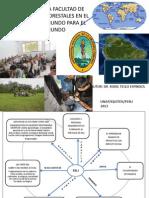 Tello e r 2013 Presentacion Yurimaguas Unap-fcf