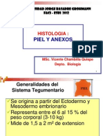 histologia_piel_y_anexos (1).pptx