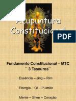 (2) Constitucional2