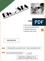 biopsi pt