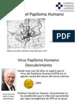 Marcos Texco Martinez VPH pdf