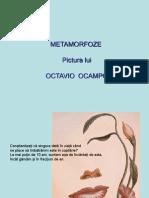 Cati Ani Implineste Sufletul Tau-Octavio_Ocampo