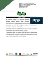 Reflexão final de módulo - António Miguens CP 4