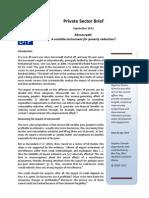 UNDP private sector brief II - Microcredit
