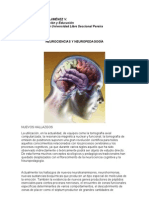Neurociencias y Neuropedagogia