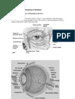 Visual Perception Disturbances Handouts.doc- Students