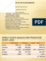 Overview of Tilapia Industry
