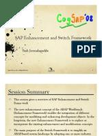 Switch Framework SAP