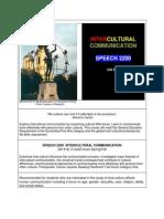 spch 2200 - intercultural comm