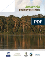 Libro Amazonia Posible y Sostenible