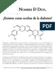 Existen Curas Ocultas de La Diabetes. Tres Secciones. Actualizado Al 4 de Julio Del 2013.