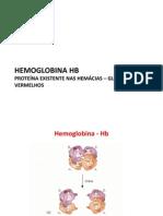 Aula 4 Hemoglobina