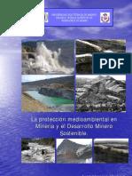 La Proteccion Medio Ambiental en Mineria