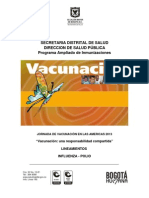 Lineamiento 2013 Influenza