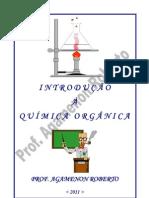Intro Organica