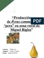 Proyecto de Pera1