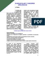 Biología Molecular y Cánceres Urológicos