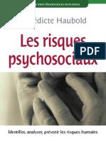 Livre - Les Risques Psychosociaux