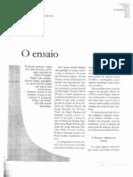 Farina(2001) Ensaio