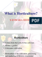 What is Horticulture
