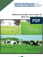 Alfafa Em Pastejo - Dieta de Vacas Leiteiras - Bol 20