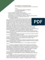 COMPOSICION DEL LIQUIDO AMNIOTICO Y CARACTERES FISICOS.docx