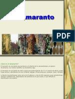 Amaranto 15-julio-2013.ppt