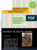 Violencia Adulto Mayor