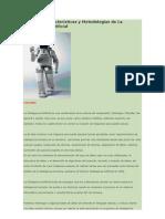 Redes Semanticas.docx
