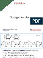 Glycogen Metabolism 1
