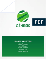 Plan Marketing Genesis A