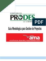 Guia de Metodologica de Gestion de Proyectos