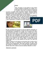 57772553 Manual de Ferran Adria