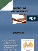 examenesdelaboratorios-100303153700-phpapp02 (1)