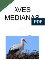 Bit AvesMedianas