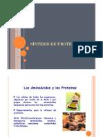 - Clase 7 Síntesis Proteica